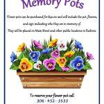 Memory Flower Pots
